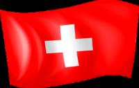 Société de transport routier France Suisse